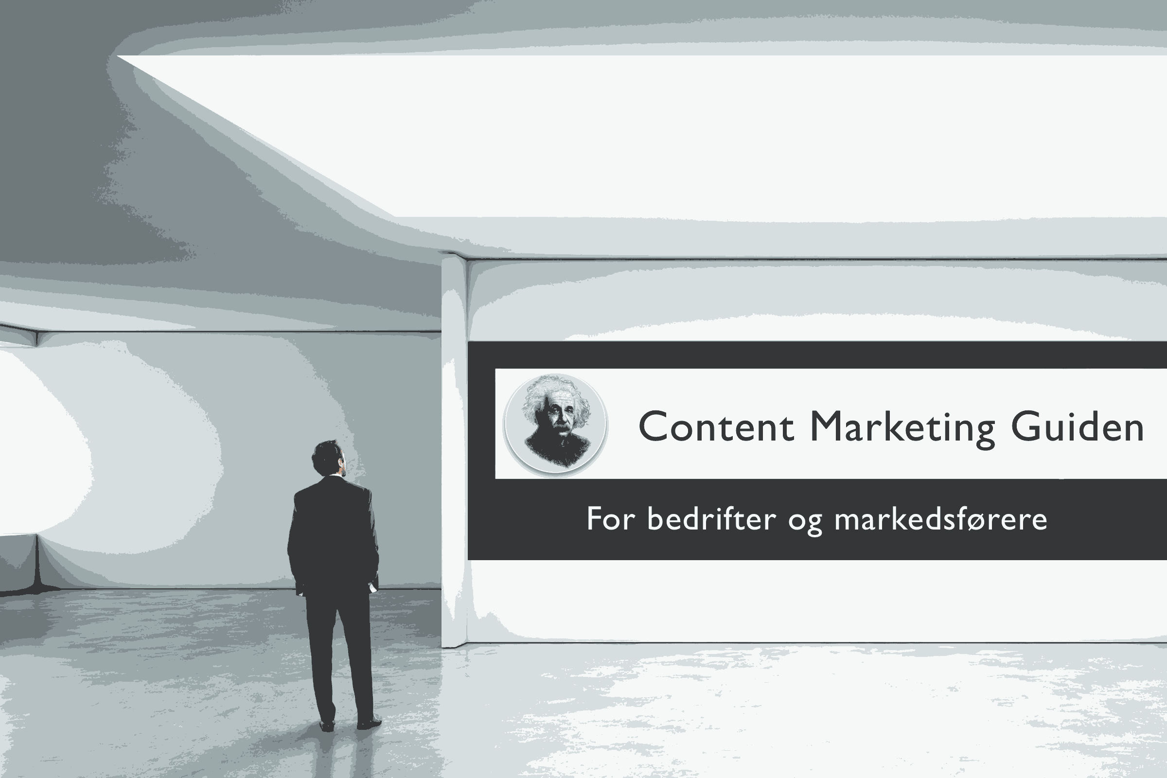 "En mann i dress ser på et bilde i et galleri: ""Content Marketing Guiden - For bedrifter og markedsførere"""